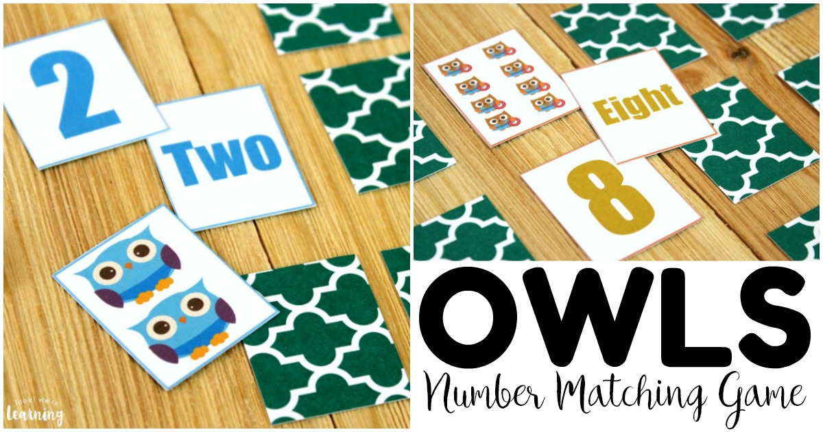 Fun Owl Number Matching Game for Kids