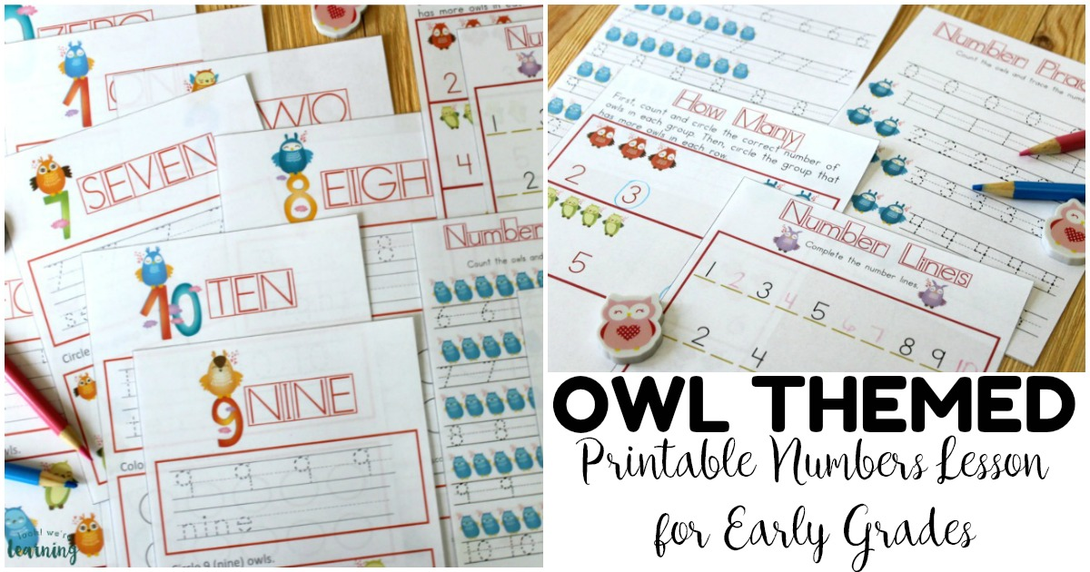 No Prep Owl Preschool Numbers Lesson for Kids