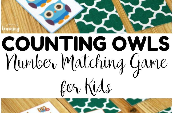 Printable Owl Number Matching Game for Kids
