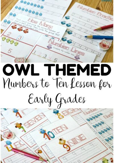 Work on early number recognition with this printable owl preschool numbers lesson! Great for a quick no-prep number review!