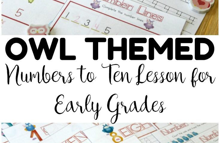 No-Prep Owl Preschool Number Worksheets