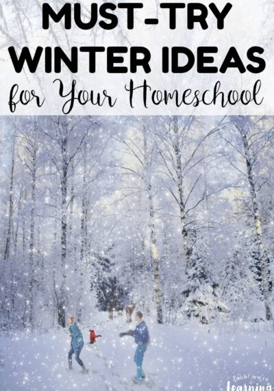 Feeling a bit chilly about homeschooling this winter? Get back into the swing of things with these must-try winter homeschool ideas!