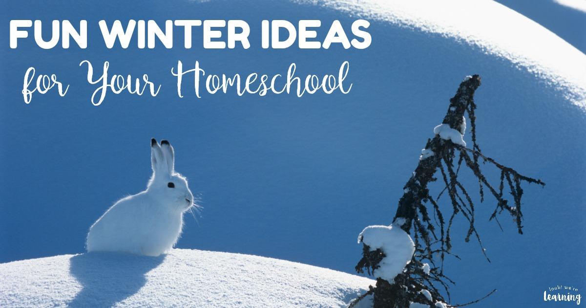 Fun Winter Homeschool Ideas to Try