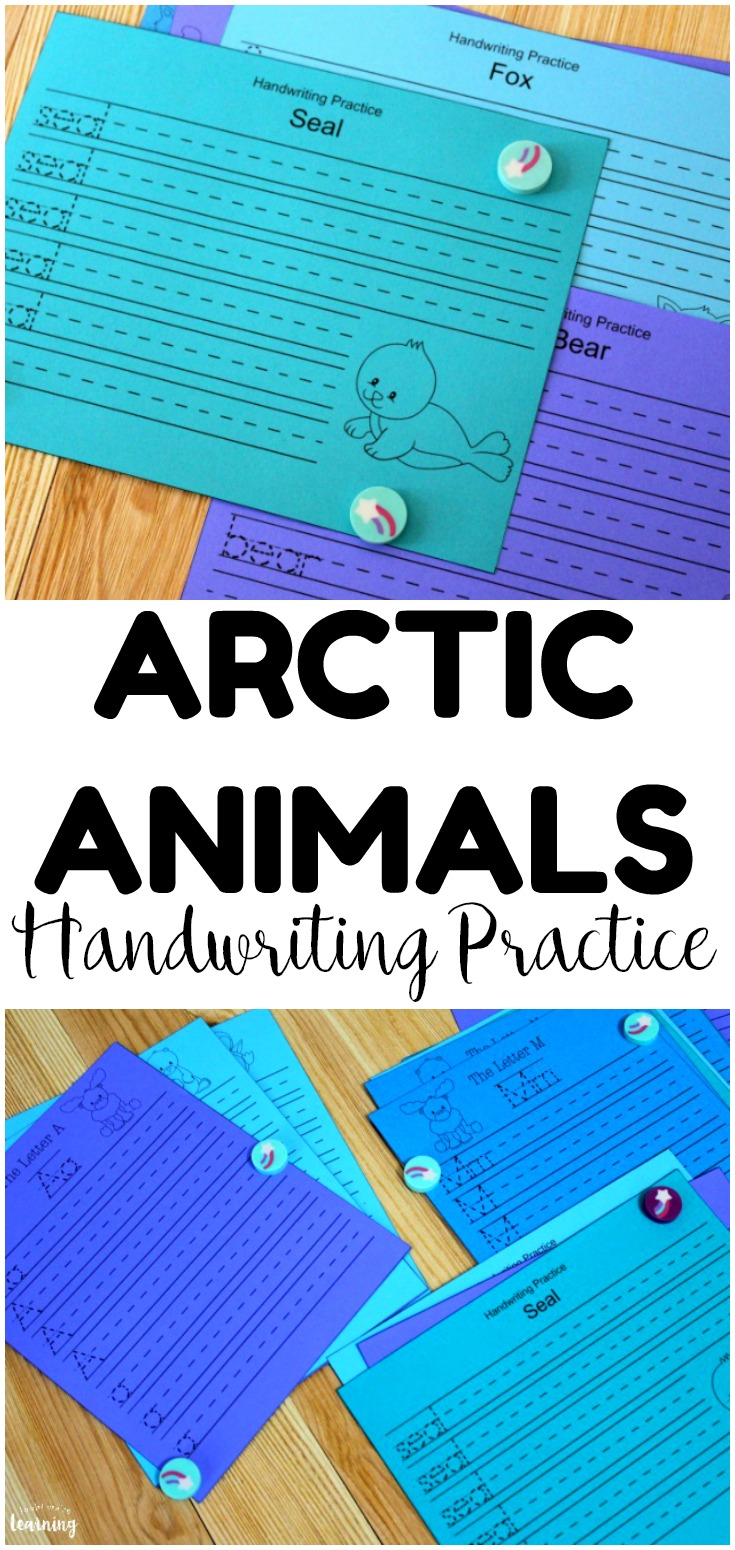 Pick up these Arctic Animals handwriting practice sheets for fun wintry themed writing lessons!