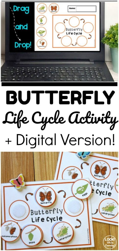 Learn about how butterflies grow with this fun and interactive butterfly life cycle sequencing activity! Available in print and as a digital activity!