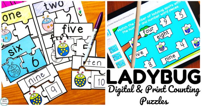 Fun Digital and Print Ladybug Number Word Puzzles