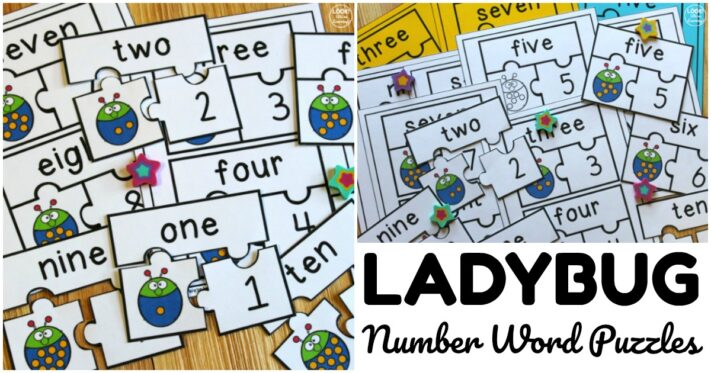 Fun Ladybug Number Word Puzzles for Kids