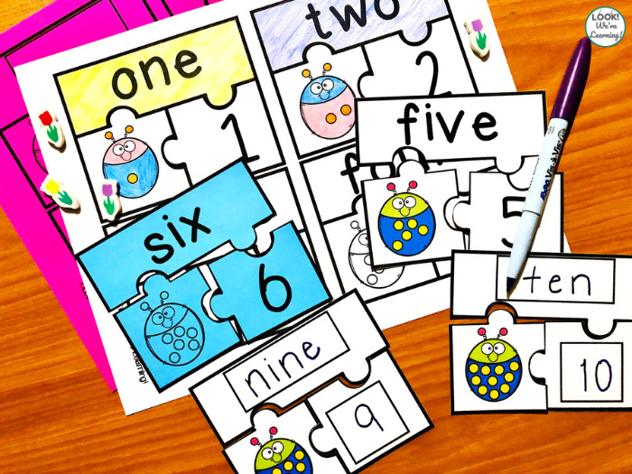 Ladybug Write and Wipe Counting Puzzles