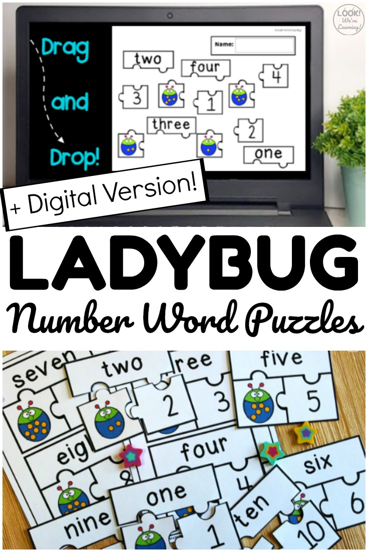 Ladybug Number Word Counting Puzzles