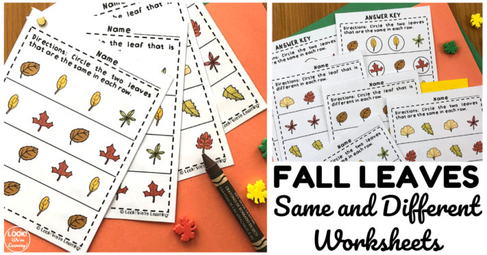 Fall Leaves Same and Different Worksheets for Kids