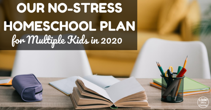 Our 2020 Homeschool Curriculum Choices