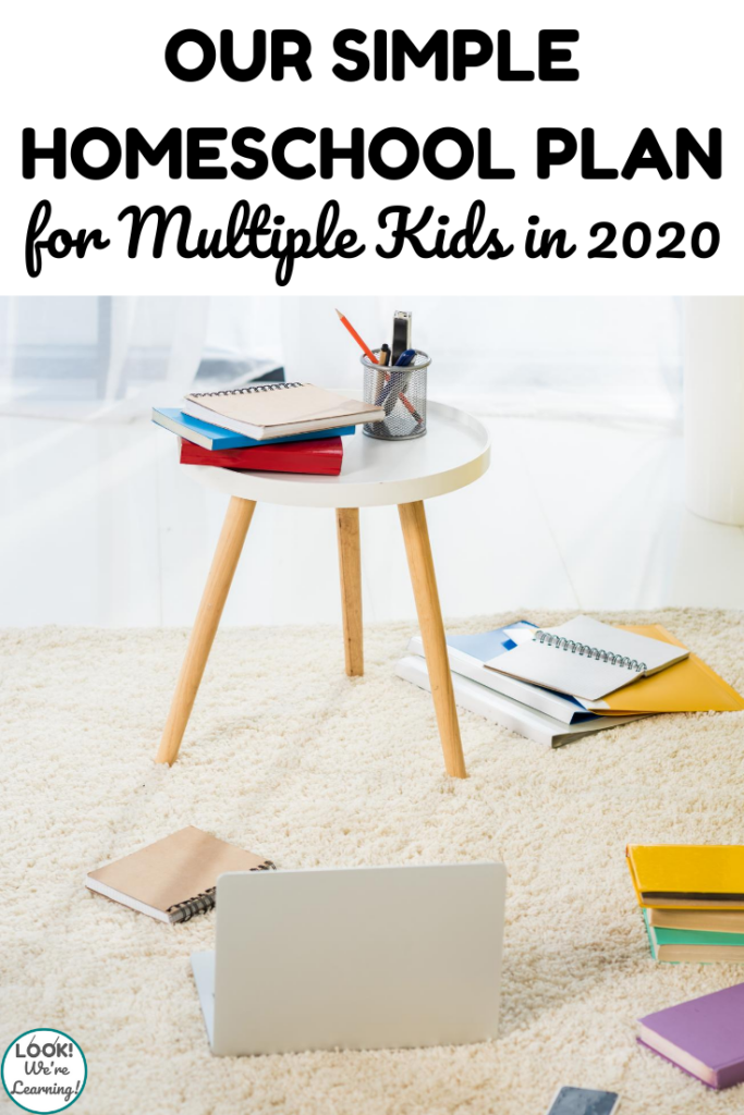 See the 2020 homeschool curriculum choices we made for our family this year!