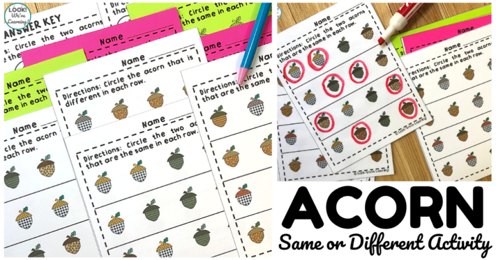 Simple Acorn Same or Different Worksheets for Kids