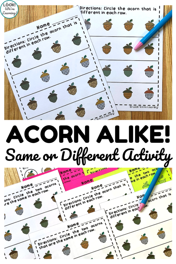 Teach early learners how to recognize same and different objects with these fall themed acorn same or different worksheets!