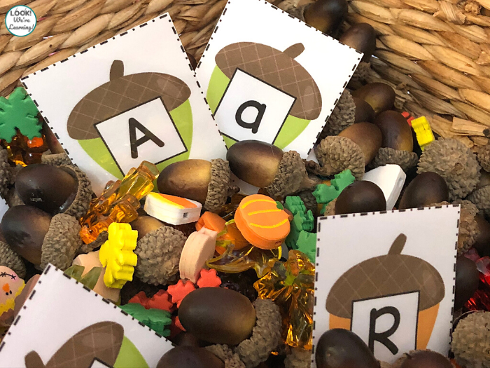 Simple Alphabet Acorn Sensory Bin