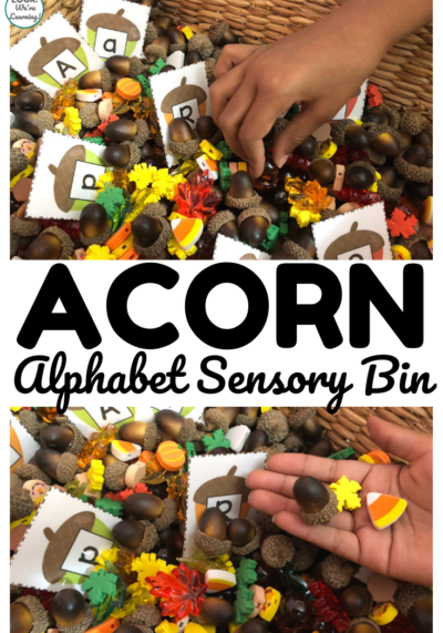 Use this alphabet acorn sensory bin for some fun sensory play and letter recognition practice during fall!