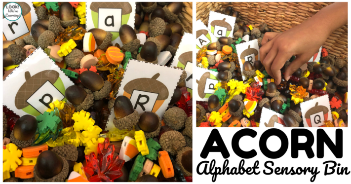 Easy Acorn Sensory Bin for Kids