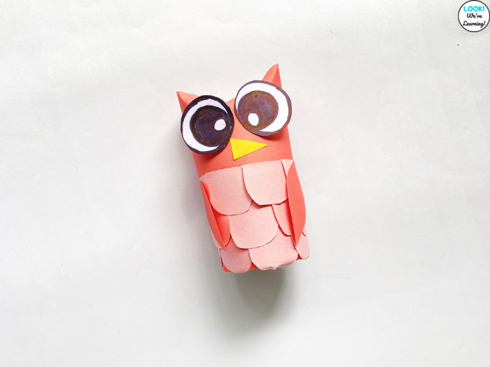 Cute Toilet Paper Roll Owl Craft