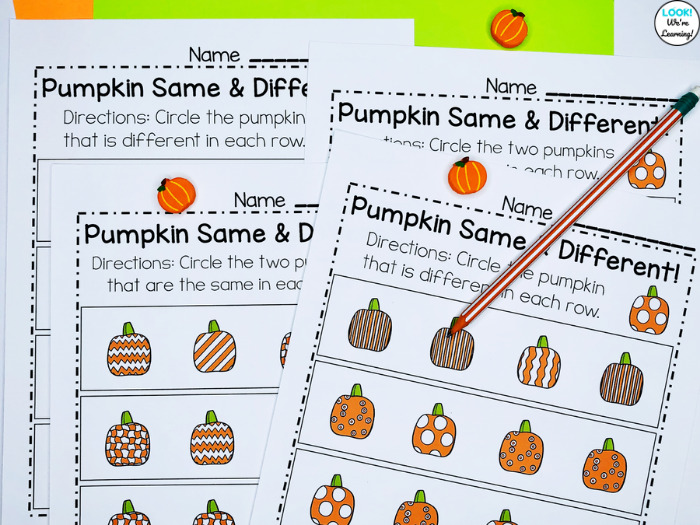 Fall Themed Same and Different Activity