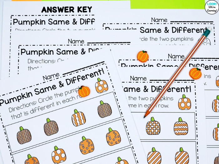 Fall Themed Visual Discrimination for Early Learners
