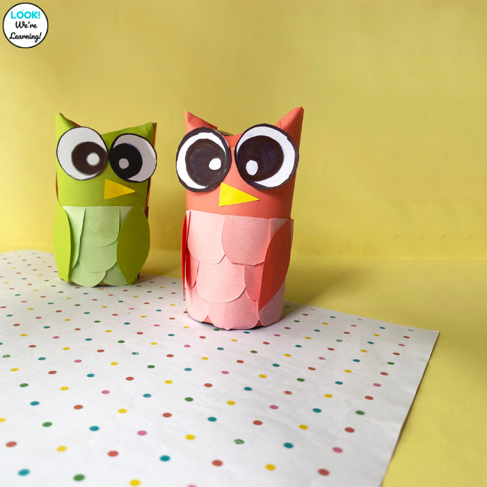 How to Make a Paper Roll Owl with Kids