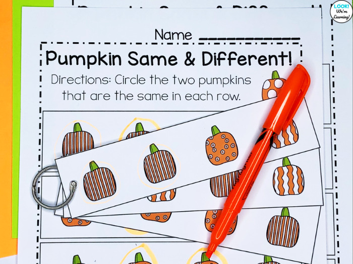 Pumpkin Themed Visual Discrimination Practice