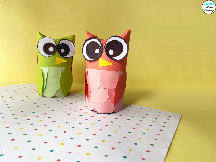 Simple Paper Roll Owl Craft