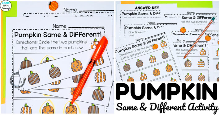 Simple Pumpkin Same and Different Worksheets for Kids