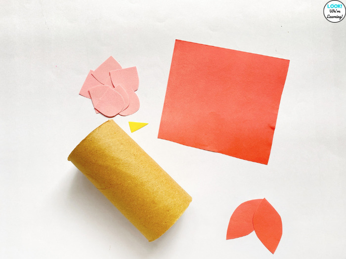 Tissue Paper Roll Owl Craft Supplies
